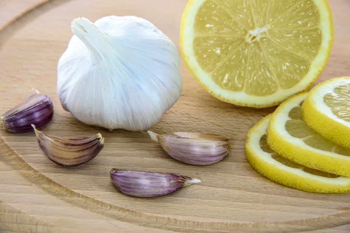 20 Natural antibiotics that will help you prevent and fight diseases, pains, and infections