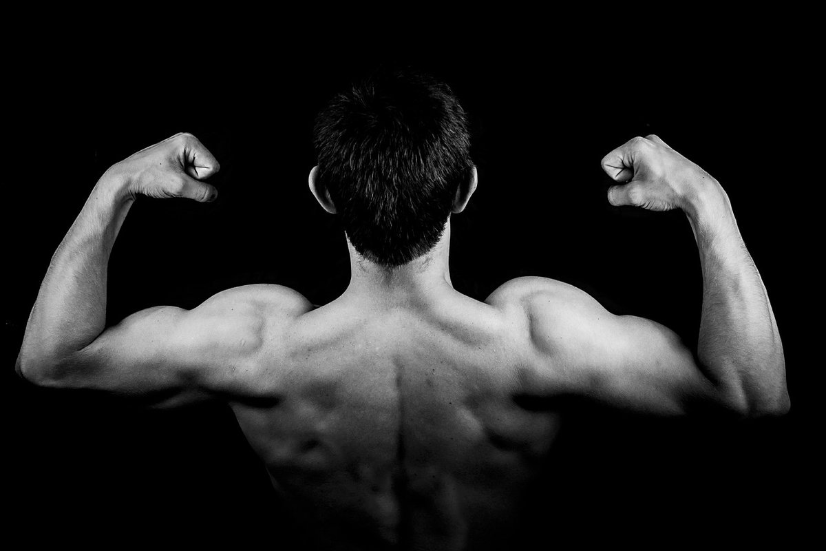 Best Exercises For A Complete Back Workout
