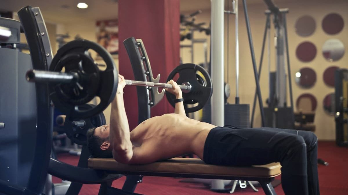 Best Chest workouts For Building Muscles