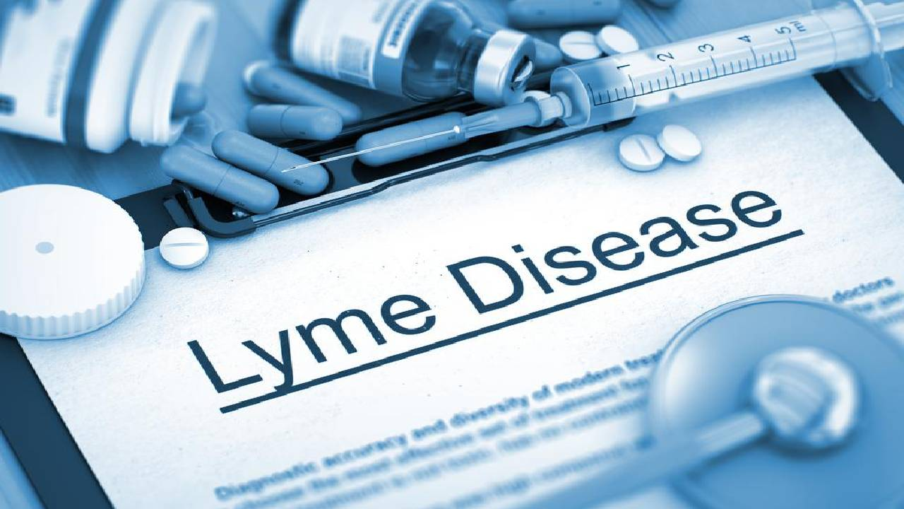 How is Lyme Diagnosed