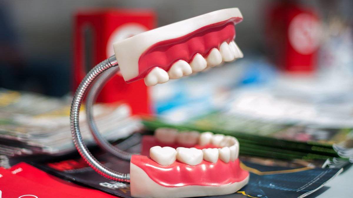 Dental Indemnity Insurance