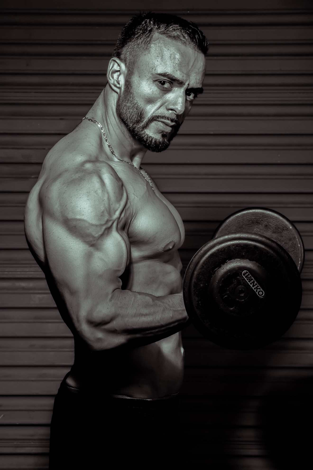 develop and grow muscle