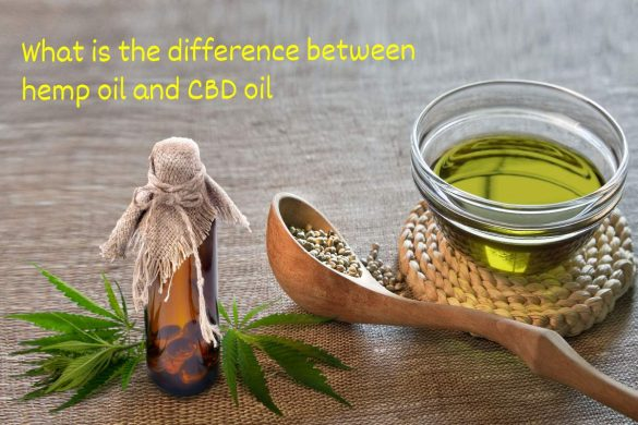 6 Major Differences in Hemp Oil and CBD Oil