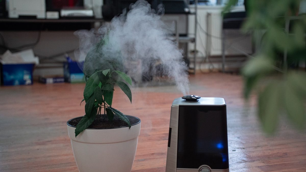 Detailed Steps To Follow To Have Your Humidifier Cleaned And Disinfected