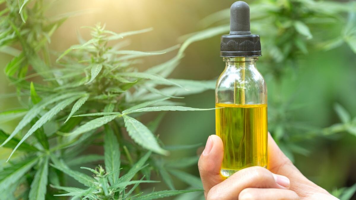 Why CBD is Your Springboard into Natural Health and Wellness