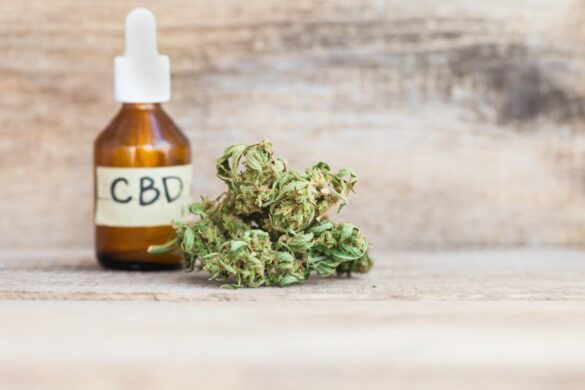 Where to Buy High-Quality CBD Oil