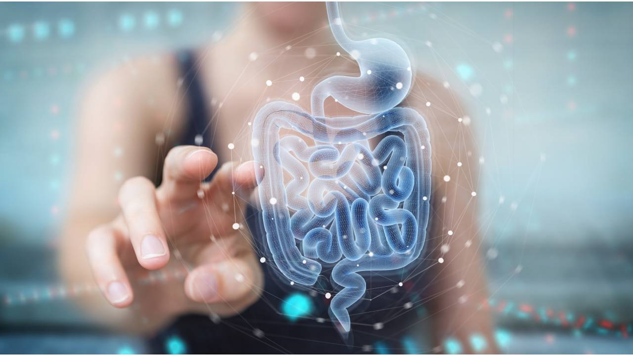 Woman using digital x-ray of human intestine holographic scan projection 3D rendering